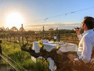 1 Day Luxury Tour in Alentejo